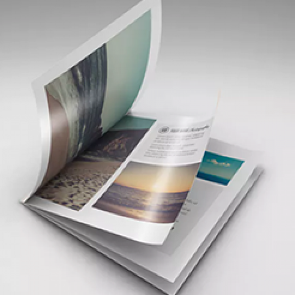 catalogs-booklets-600x600-1.png